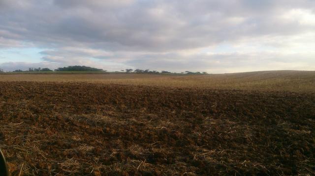 580 Hectares - 240 Alqueires - Fazenda Sede - Lapa - Foto 4