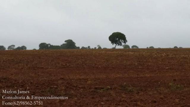 Fazenda em Porangatu!! - Foto 13