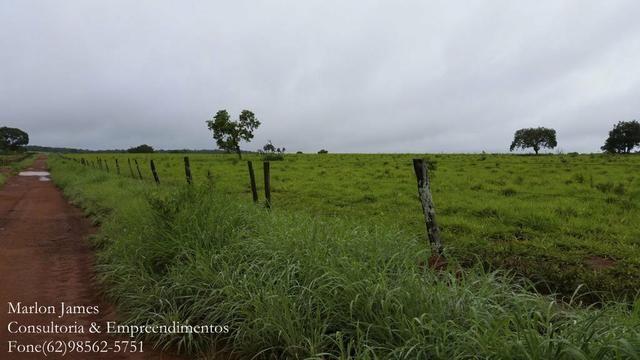 Fazenda em Porangatu!! - Foto 18