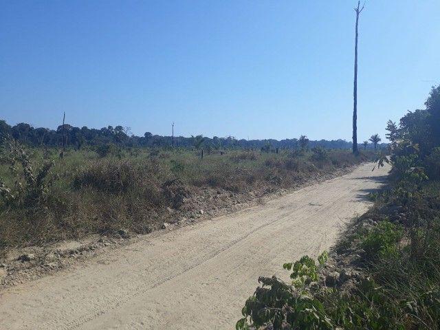 Vendo area de 248 hectareas  - Foto 4
