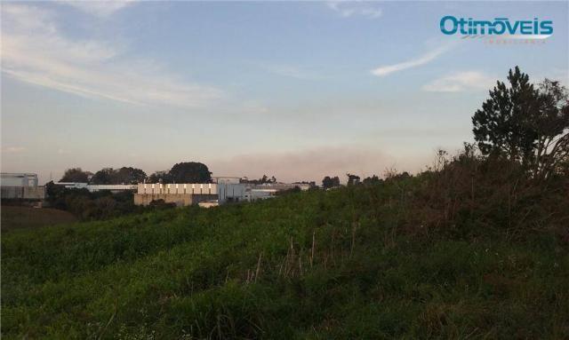 Área à venda, colônia zacarias, são josé dos pinhais - ar0002. - Foto 12