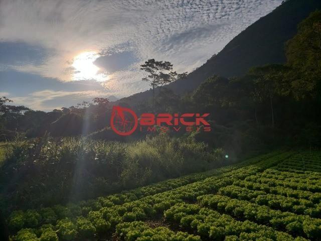 Maravilhosa fazenda com excelente potencial comercial em albuquerque. - Foto 13