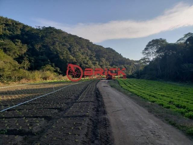 Maravilhosa fazenda com excelente potencial comercial em albuquerque. - Foto 3