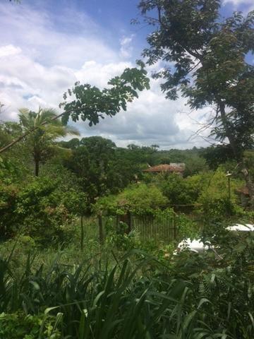 Fazenda-Granja-Sítio-Chácara 12 Hectares Aliança, Aceito Imóvel ou Automóvel - Foto 17