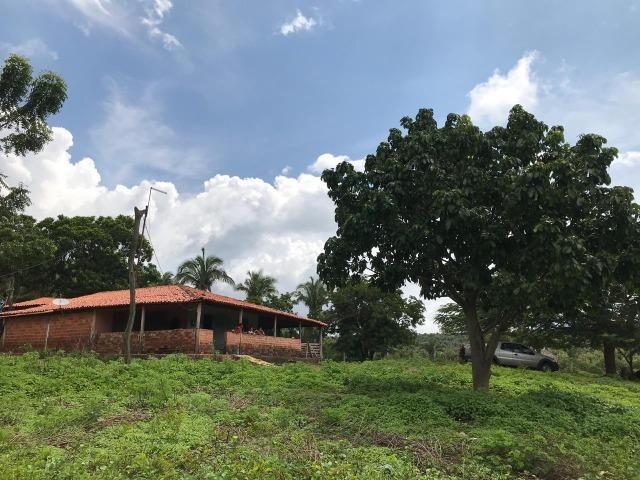 Vendo terreno 179 ha, Zona Rural de Miguel Alves