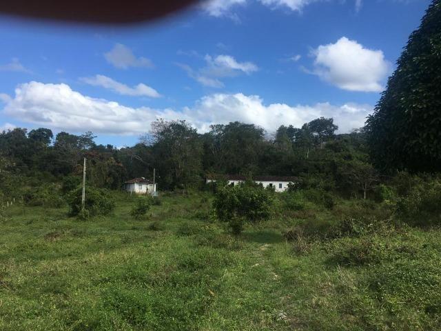 Fazenda - Barro Preto - Foto 5