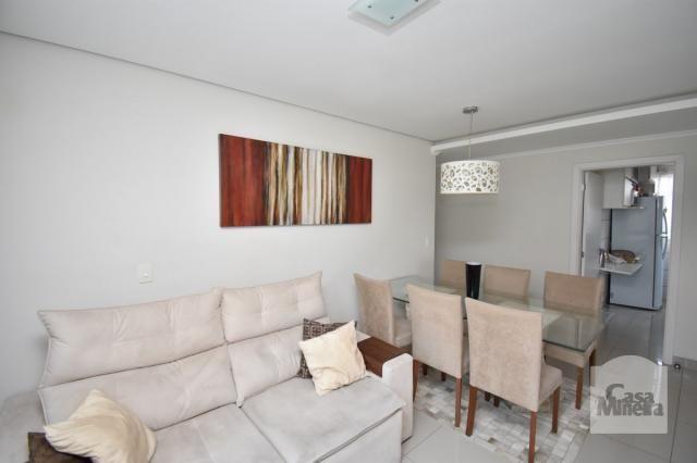 Apartamento à venda com 3 dormitórios em Havaí, Belo horizonte cod:239892 - Foto 3