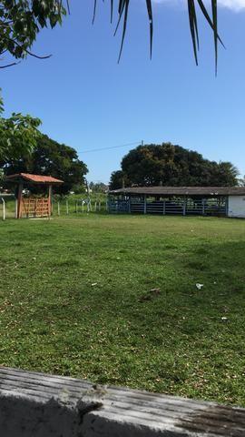 Arrendo Fazenda na ilha de Itaparica - Foto 3