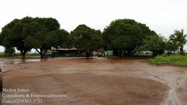 Fazenda em Porangatu!! - Foto 16