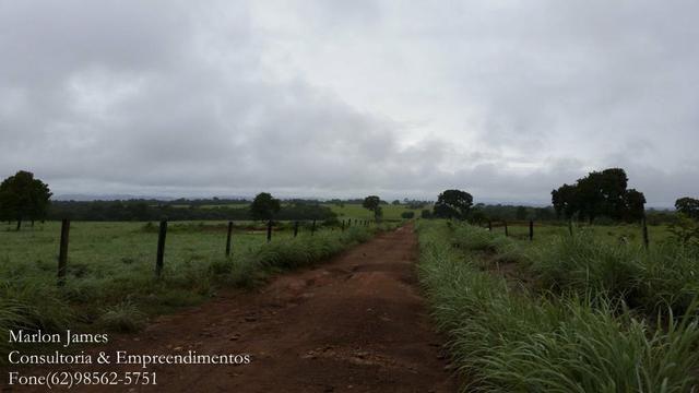 Fazenda em Porangatu!! - Foto 15