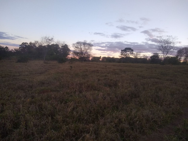 Vendo terreno região do Mucambo paraopeba  - Foto 5