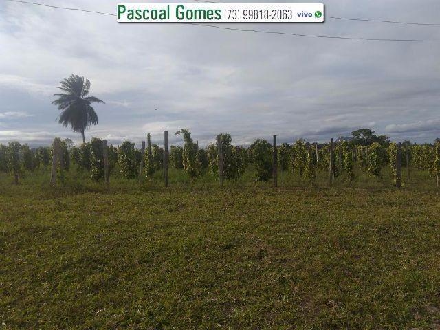 95 % Plana, Prado, Bahia - Foto 13
