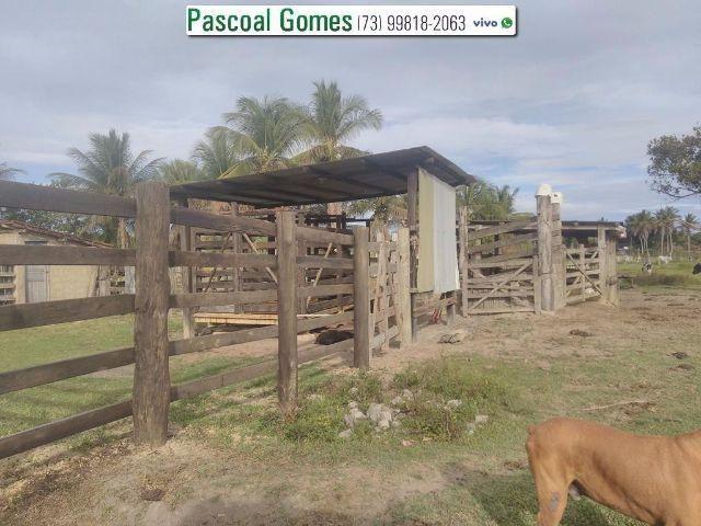 95 % Plana, Prado, Bahia - Foto 2