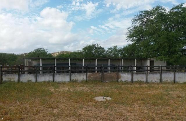 Fazenda Fernando Pedrosa, 489 Hectares, Escriturada, 7km Rio Pajeú, Açude, Casa Sede - Foto 13