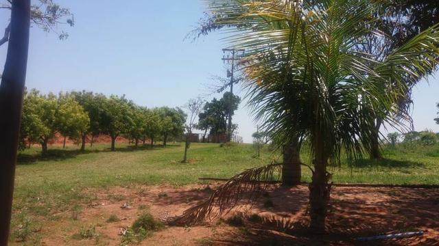 Sitio Pirapozinho Imobiliária Leal Imoveis plantões todos os dias 3903-1020 99 725-2505 - Foto 17