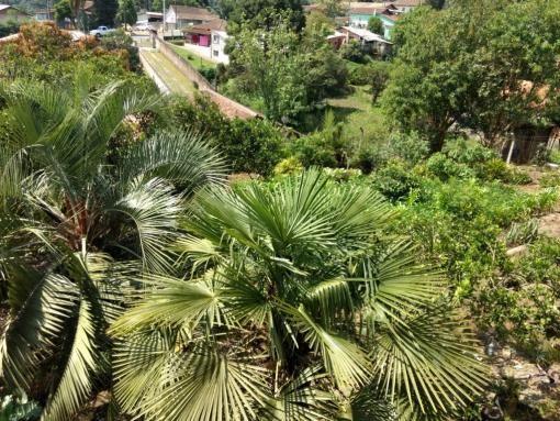 Ótima Casa de Alvenaria, Bairro Vila Nova - Foto 17