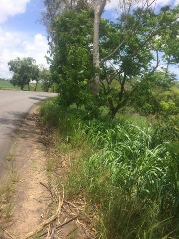 Fazenda-Granja-Sítio-Chácara 12 Hectares Aliança, Aceito Imóvel ou Automóvel - Foto 19