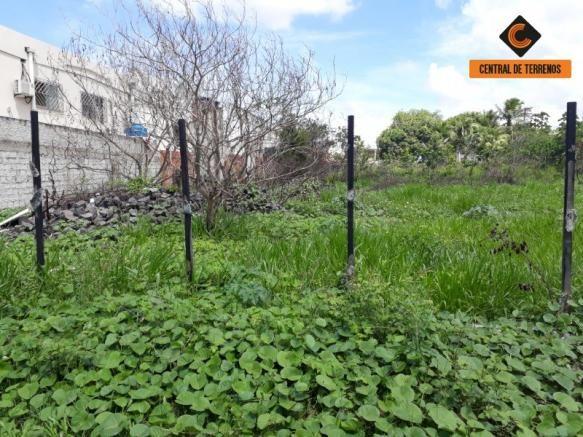 Terreno à venda em Cascalheira, Camaçari cod:TE00218 - Foto 5