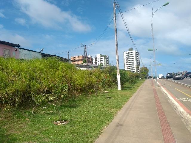 D206 Terreno na Avenida Marcio Canuto /Barro duro - Foto 14