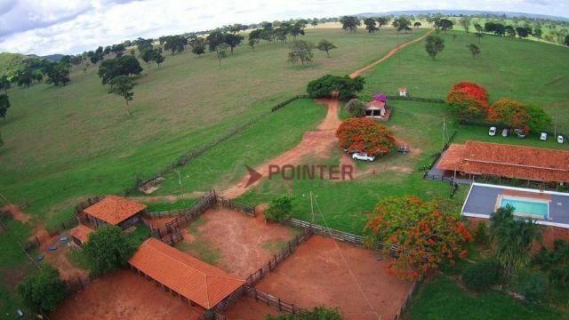 Fazenda à venda, 5614400 m² por R$ 15.000.000,00 - Zona Rural - Cachoeira Alta/GO - Foto 8