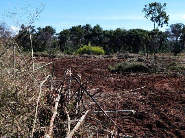 Fazenda em Tupiratins - TO - Foto 7