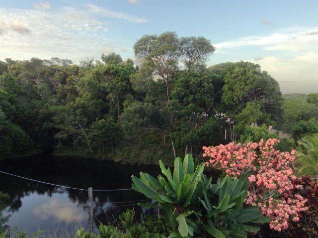 Espetacular fazenda, Salinas das Margaridas Bahia - Foto 13