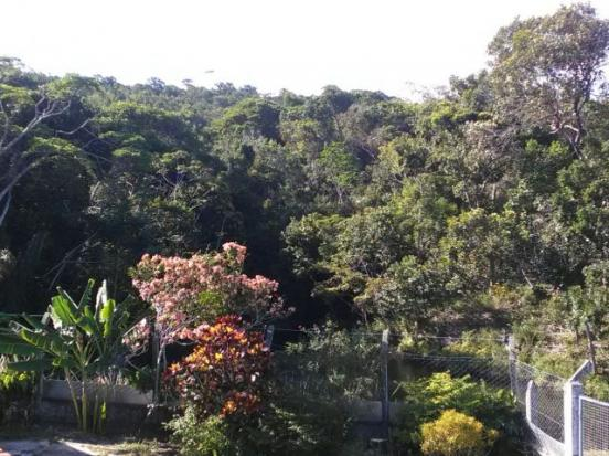 Espetacular fazenda, Salinas das Margaridas Bahia - Foto 15