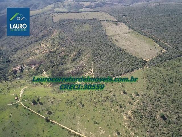 Fazenda Ipanema com 20 Alqueires em Pedra Azul-MG - Foto 10