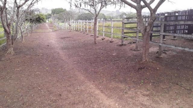Fazenda para venda em feira nova, feira nova - Foto 7