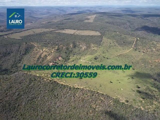 Fazenda Ipanema com 20 Alqueires em Pedra Azul-MG - Foto 8