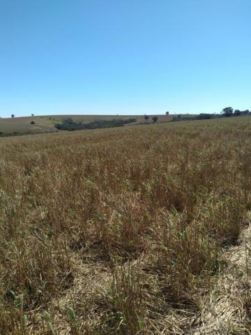 Fazenda à venda entre Itabera e Taquarituba/SP - Foto 16