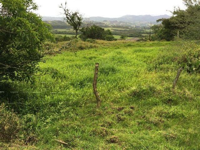 Sítio em Santo Antônio da Patrulha/RS com 7Ha com Arroio e Açude. Peça o Vídeo Aéreo - Foto 6