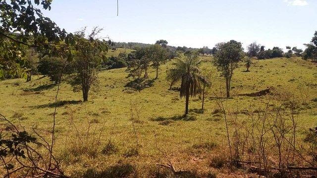 Fazenda em Santa Cruz de Goiás - GO