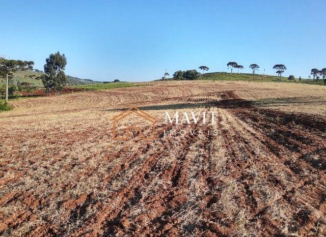 Terreno Rural 25 hectares com Casa e Galpão em Capão Alto SC - Foto 12