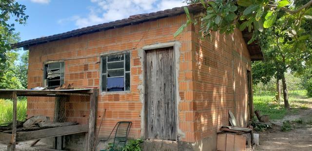 Chácara 30 ha - R$ 430.000,00 - Foto 2