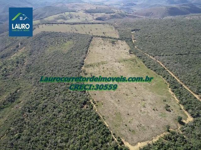 Fazenda Ipanema com 20 Alqueires em Pedra Azul-MG - Foto 9