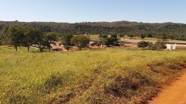Fazenda em Santa Cruz de Goiás - GO - Foto 6