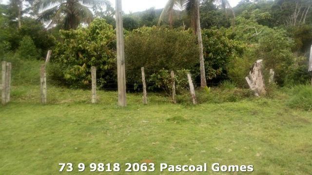 Fazenda a venda Bahia - Foto 8