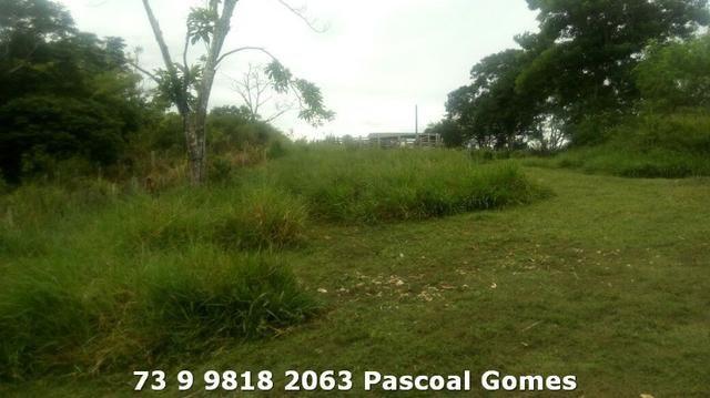 Fazenda a venda Bahia - Foto 7
