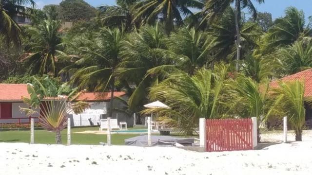 Vende-se excelente terreno em Barra de Catuama , a 200m da praia - Foto 19