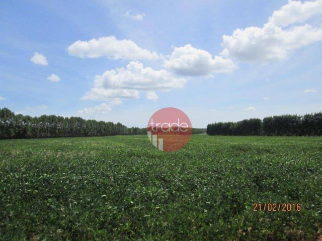 Fazenda rural à venda, Centro, Buritizeiro. - Foto 8