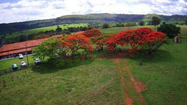 Fazenda à venda, 5614400 m² por R$ 15.000.000,00 - Zona Rural - Cachoeira Alta/GO - Foto 5