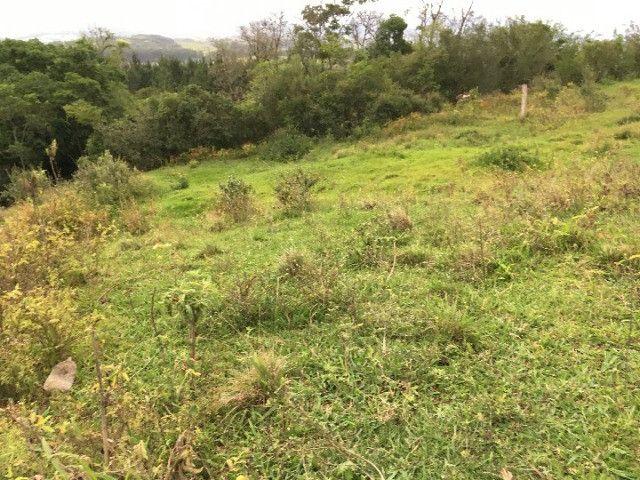 Sítio em Santo Antônio da Patrulha/RS com 7Ha com Arroio e Açude. Peça o Vídeo Aéreo - Foto 11