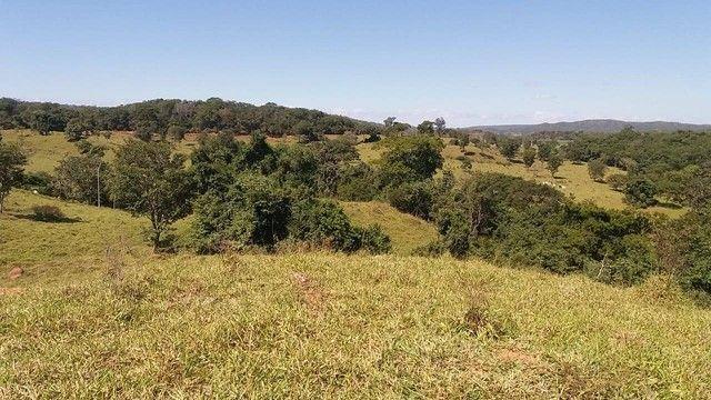 Fazenda em Santa Cruz de Goiás - GO - Foto 4