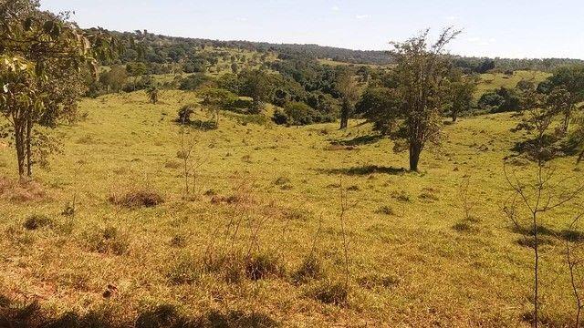 Fazenda em Santa Cruz de Goiás - GO - Foto 9