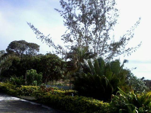 Espetacular fazenda, Salinas das Margaridas Bahia - Foto 16