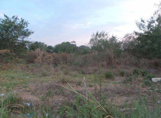 Vendo terreno de 1.000 m² no bairro Mapim - Várzea Grande - Foto 3