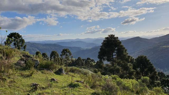 Sítio em Urubici/ área rural/ chácara em Urubici com - Foto 2