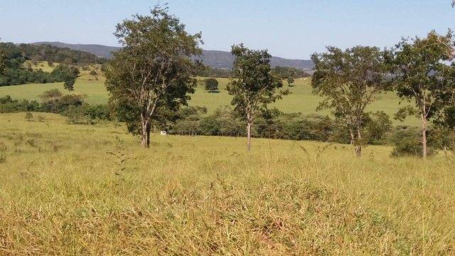 Fazenda em Santa Cruz de Goiás - GO - Foto 10