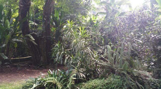 Casa à venda com 5 dormitórios em Vila velha, Angra dos reis cod:BR40330 - Foto 5